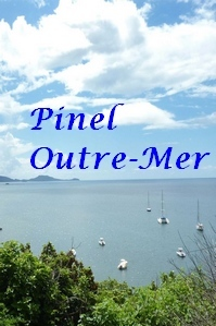 Loi Pinel Outre-Mer